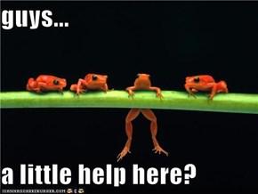 guys...  a little help here?