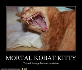 MORTAL KOBAT KITTY