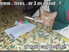 hmm... fives... or 3 uv a kind...?  ai nawt can decidez!