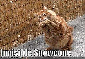 Invisible Snowcone
