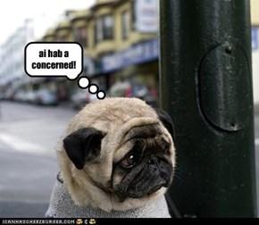 ai hab a concerned!