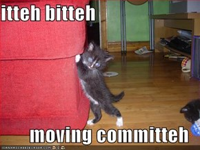 itteh bitteh  moving committeh
