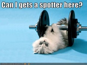 Can I gets a spotter here?