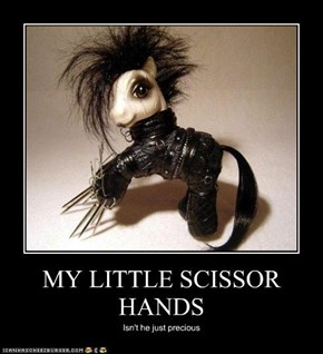 MY LITTLE SCISSOR HANDS