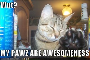 Wut?  MY PAWZ ARE AWESOMENESS