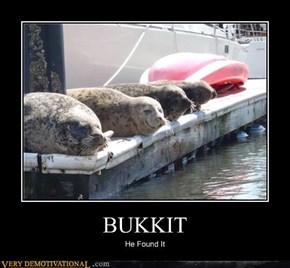 BUKKIT