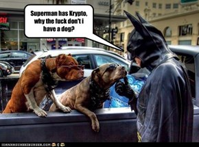 Superman has Krypto, why the fuck don't i have a dog?