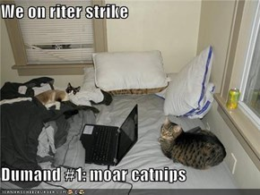 We on riter strike  Dumand #1: moar catnips