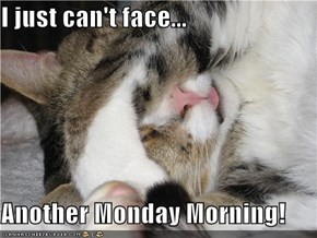I just can't face...  Another Monday Morning!