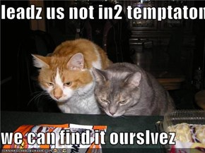 leadz us not in2 temptaton  we can find it ourslvez
