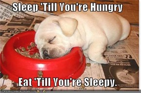 Sleep 'Till You're Hungry  Eat 'Till You're Sleepy.