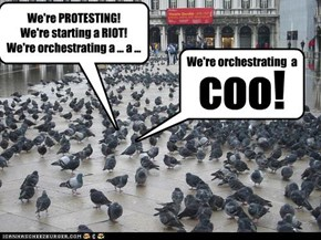 We're PROTESTING! We're starting a RIOT! We're orchestrating a ... a ...
