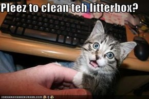 Pleez to clean teh litterbox?