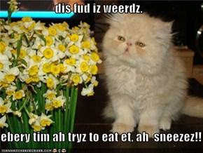 dis fud iz weerdz.  ebery tim ah tryz to eat et, ah  sneezez!!