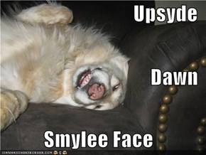 Upsyde Dawn Smylee Face