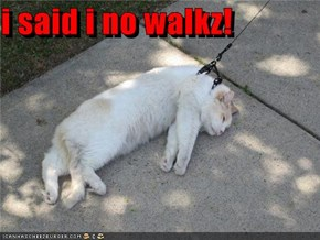 i said i no walkz!