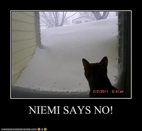 NIEMI SAYS NO!