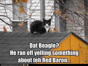 Dat Beagle?  He ran off yelling something about teh Red Baron...