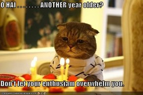 O HAI . . . . . . . . ANOTHER year older?  Don't let your enthusiam overwhelm you.