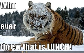 Who ever threw that is LUNCH!