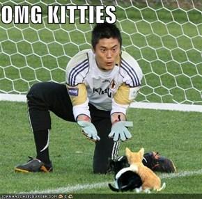 OMG KITTIES