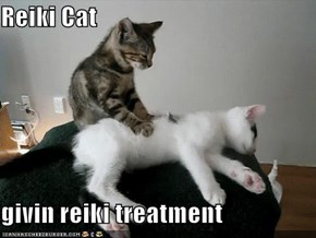 Reiki Cat  givin reiki treatment