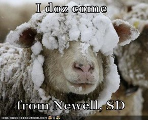 I doz come  from Newell, SD