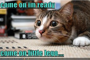 come on im ready  come on little lego....