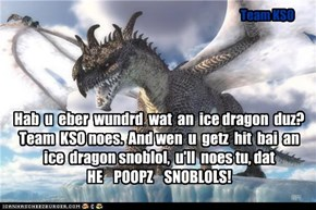 Hab  u  eber  wundrd  wat  an  ice dragon  duz?  Team  KSO noes.  And wen  u  getz  hit  bai  an  ice  dragon snoblol,  u'll  noes tu, dat HE    POOPZ    SNOBLOLS!