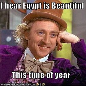 I hear Egypt is Beautiful   This time of year