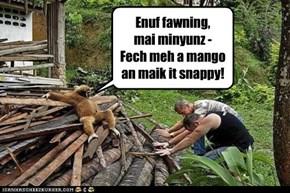 Enuf fawning,  mai minyunz - Fech meh a mango  an maik it snappy!