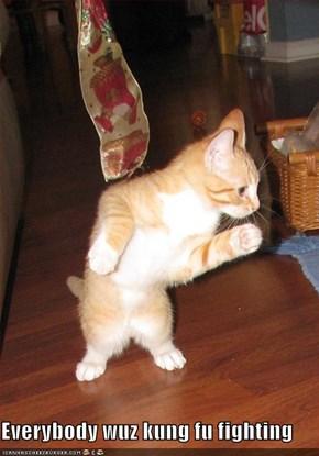 Everybody wuz kung fu fighting
