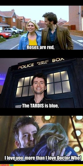 A Doctor Who Valentine