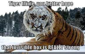 Tiger Mime, you better hope  that invisible box is REALLY strong