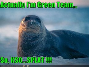 Actually I'm Green Team,,,  So, KSO...SPLAT !!!