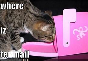 where iz ter mail