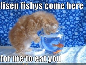lisen fishys come here   for me to eat you