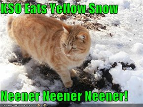 KSO Eats Yellow Snow  Neener Neener Neener!