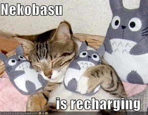 Nekobasu  is recharging
