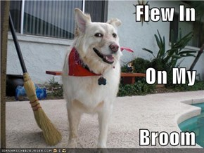 Flew In On My Broom