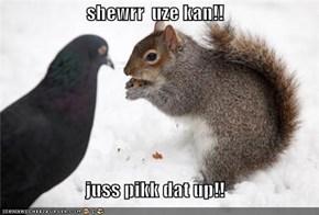 shewrr  uze kan!!  juss pikk dat up!!