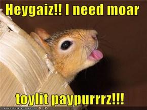 Heygaiz!! I need moar  toylit paypurrrz!!!