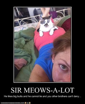 SIR MEOWS-A-LOT