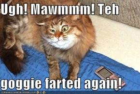 Ugh! Mawmmm! Teh  goggie farted again!