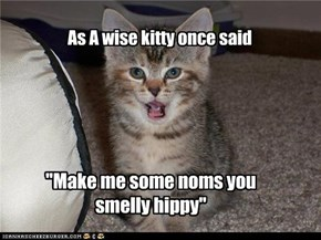 As A wise kitty once said