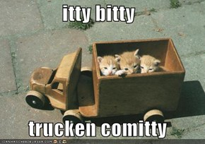 itty bitty    trucken comitty