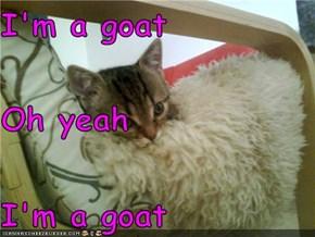 I'm a goat Oh yeah I'm a goat