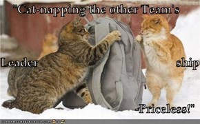 """Cat-napping the other Team's Leader                                              ship -Priceless!"""