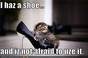 I haz a shoe...  and iz not afraid to uze it.