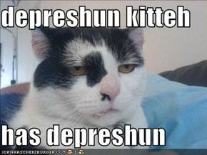 depreshun kitteh  has depreshun